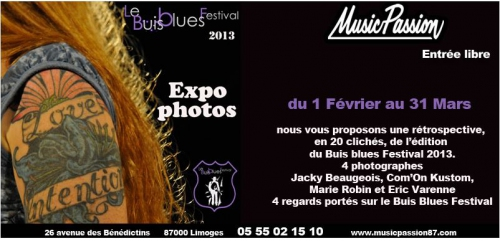 blog-expo-BuisBlues-2014.jpg